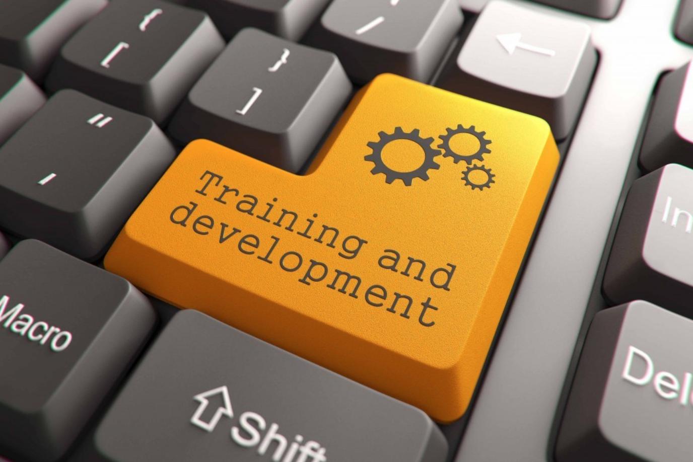 Online Training for Deaf Interpreters
